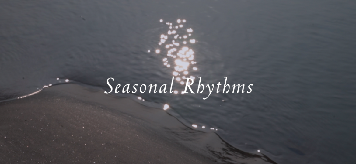 PARO Seasonal Rhythms - Still